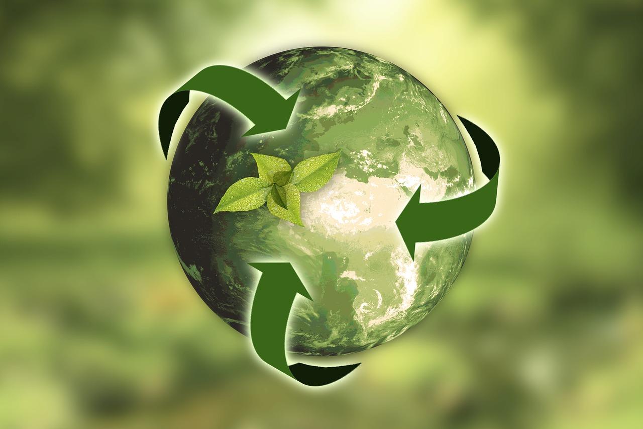 3 af de største tendenser indenfor bæredygtighed