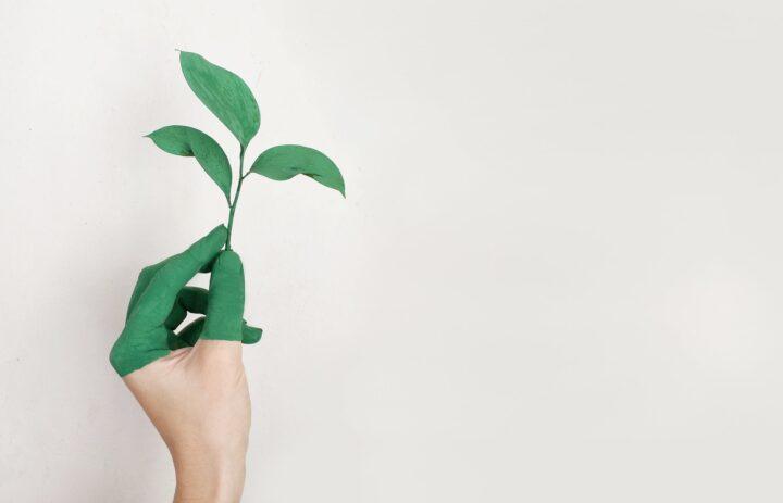 4 tips til at tage det bæredygtige spring