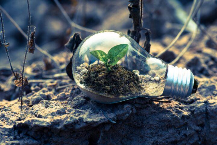 Dette kan du gøre for at formindske dit klimaaftryk